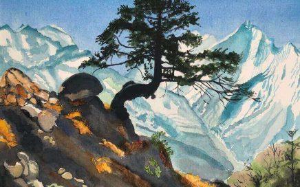 Himalayan Bonzai: Tim Barraud