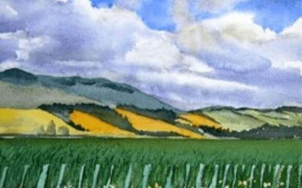 Golden Hills, Wairarapa: Tim Barraud