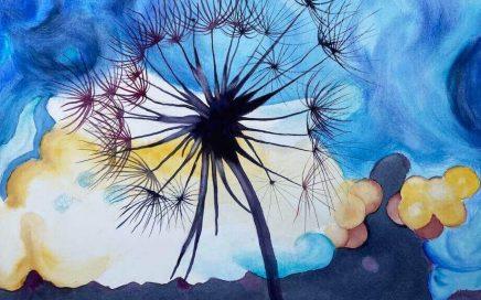 Seed Painting: Tim Barraud