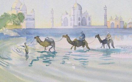 Three Camels and the Taj Mahal: Tim Barraud