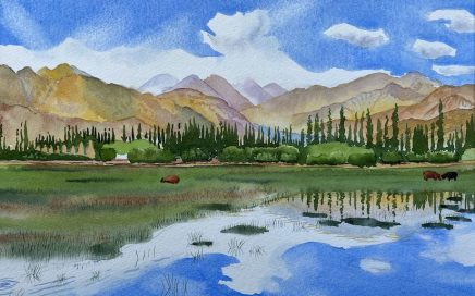 Ladakh, Tibetan Plateau: Tim Barraud