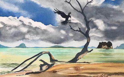Raven Landing: Tim Barraud