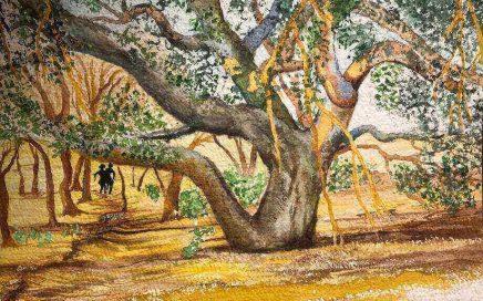 Sitting Down Tree, RLP: Tim Barraud