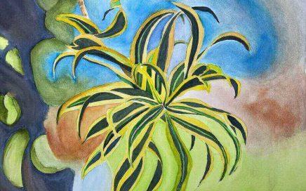 Wild Weed: Tim Barraud