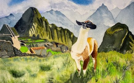 Machu Picchu II: Tim Barraud
